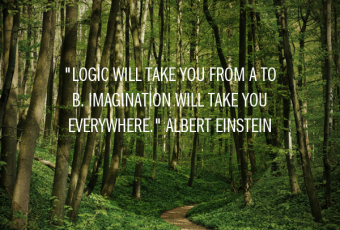 """""""Logic will take you from A to B. Imagination will take you everywhere."""" Albert Einstein"""